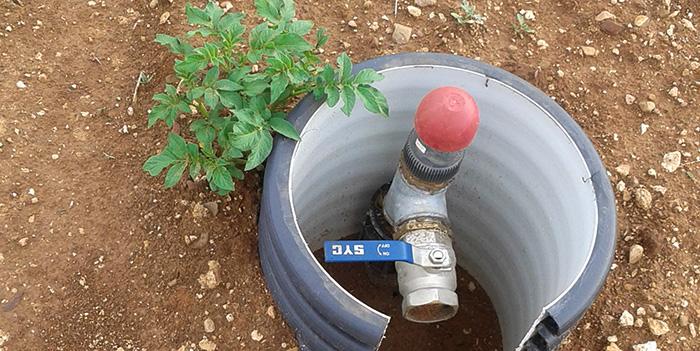 1709Regaber Referencias Agricultura Rioja Tomate 02