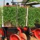 1802Regaber Noticias Cultivo Tomate 01